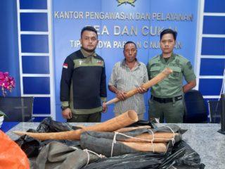 Penyeludupan 10 Potong Gading Gajah Dari Malaysia Berhasil Digagalkan.