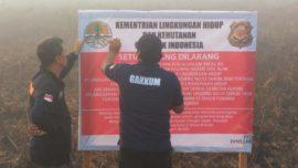 Sudah 10 Lokasi Karhutla Disegel di Kalimantan Barat.