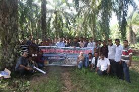 Untuk Capai SDM Indonesia Unggul, Kapan Petani Kelapa Sawit Akan Serius Diberdayakan.