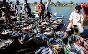 Ketua Umum Front Nelayan Indonesia (FNI) Rusdianto Samawa: Ayo Pak Presiden, Mandirikan Industri Perikanan Nasional Tanpa Impor Bahan Baku.