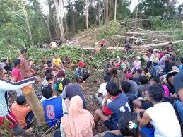 Dihentikan Sementara Atas Desakan Warga Pulau Wawonii, Usut dan Tindak Tegas Dong Kejahatan Perusahaan Tambang.