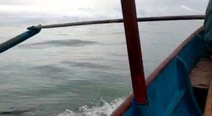 Minim Listrik, Minim Jaringan Komputer, Naik Pompong Menembus Terjangan Ombak Untuk Mengajar Ke Pelosok Pulau, Kisah Guru di Kepulauan Nias Memprihatinkan. (Ist)