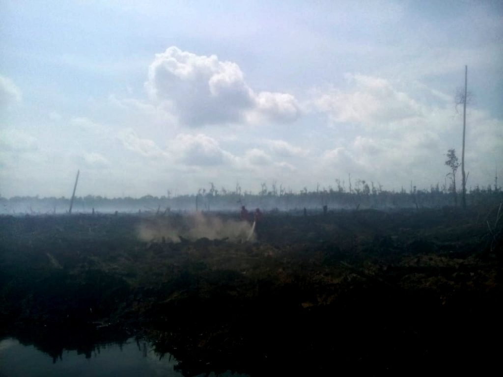 Kebakaran Hutan Kembali Terjadi Di Riau, Lokasinya Di Lahan Konsesi PT Arara Abadi. – Foto: Kebakaran Hutan dan Lahan (Karhutla) kembali terjadi di Kabupaten Pelalawan, Provinsi Riau. (Istimewa/Jhonny M)